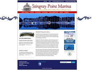 stingray point website screen shot